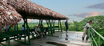 SELVA-MIRADOR-amazonico.jpg