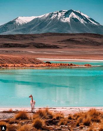 bolivia-tunupa-volcan.jpg